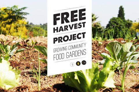 Free Harvest - Corporate Identity