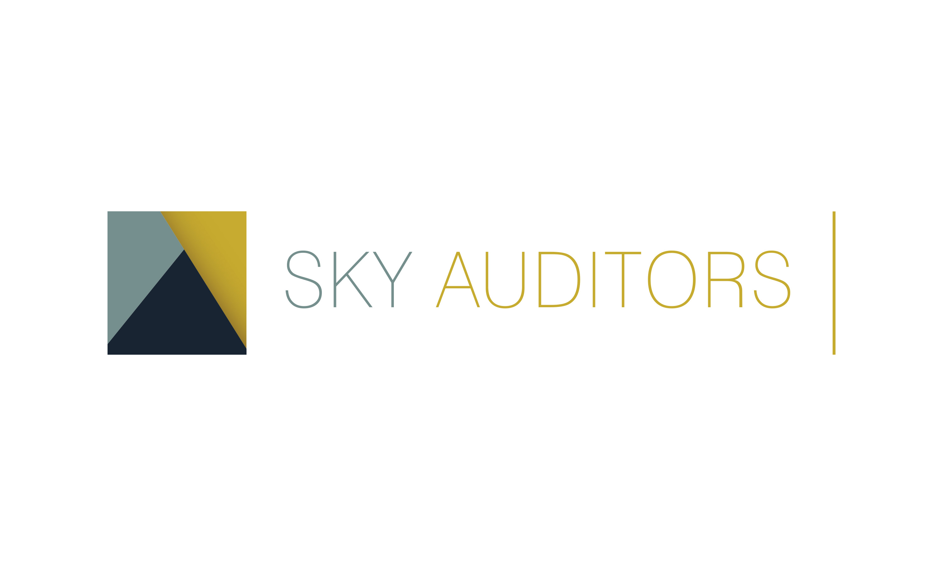 SKY Auditors - Visual Identity